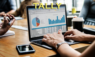 TECHINAUT-TALLY-011