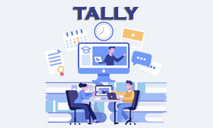 TECHINAUT-TALLY-013