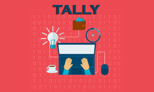 TECHINAUT-TALLY-014